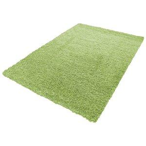 Vloerkleed hoogpolig groen Adriana Shaggy  1500/AY Groen